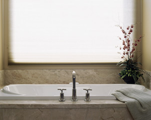Marble Clad Bathtub in Front of Window