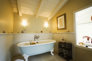 Claw Foot Bathtub in Bathroom with Wainscoting