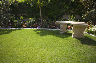 Bench on Lawn in Garden