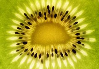 Extreme close up of a Kiwi