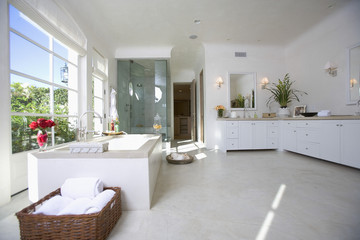 Exquisite interior of a spacious bathroom