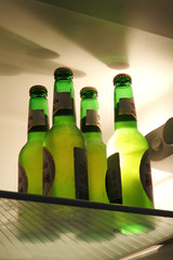 Low angle view of alcohol bottles in the refrigerator