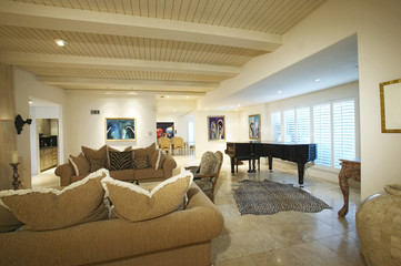 Several cushions are arranged on the couches in a sumptuous living room