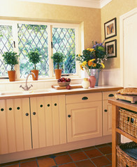 Lattice Windows over Kitchen Sink