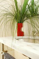 Plant in pot kept near sink