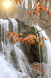 Autumn leafs on waterfall background