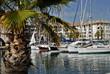 Port de Fréjus avec un palmier en France - 12633144
