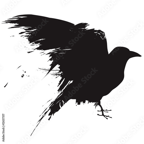 Vector raven or crow in grunge style - 12637517