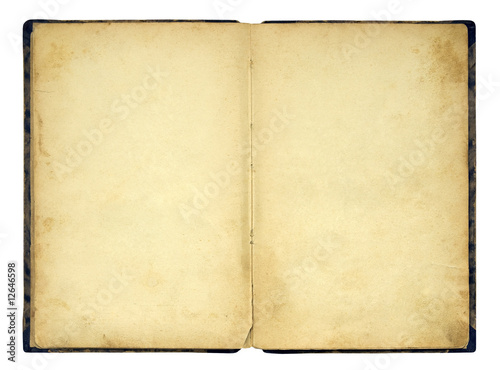 Open old blank book isolated on white - 12646598