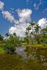 Fairchild tropical botanic garden, FL, USA