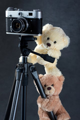camera and two teddies bears isolated on grey background