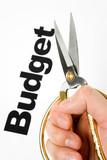 Budget Cut poster