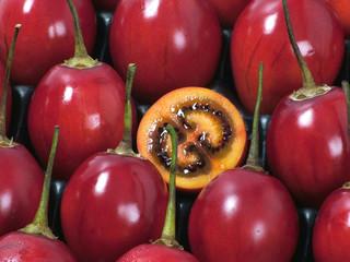 Tree Tomato- Tomate De Arbol