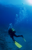 Underwater diver with yellow fins and  bubbles. poster