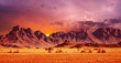 Leinwandbild Motiv Namib Desert