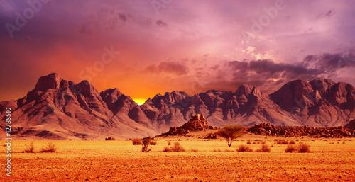 Namib Desert - 12785510