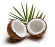 Coconuts 5