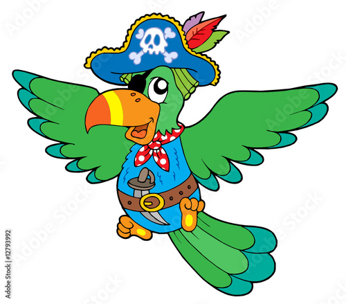 Staande foto Piraten Flying pirate parrot