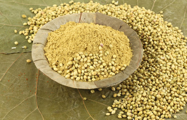 coriander seeds and powder in dry leaf background