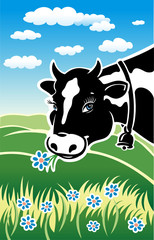 Kind cow on a meadow