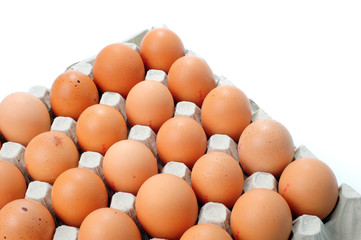 A lots of brown chicken eggs