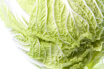 Long Cabbage Isolated