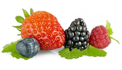 Frutti di Bosco 41