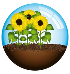 Sunflowers globe concept