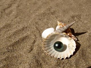 perle et coquillages