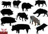set of swines poster