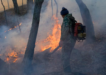 Suppression of Forest Fire 13