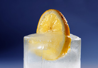 lemon in ice