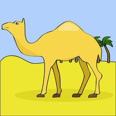 Cartoon camel in the desert