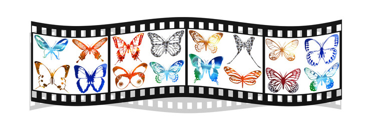 film with bright metal butterfly isolated on white