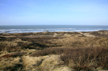 Dunes and sea. Windy day in Netherlands.