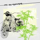 bike and marijuana, freedom picture poster