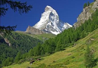 Die Postkarte von Zermatt