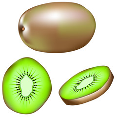 Whole kiwi, slice, and wedge - vector illustration