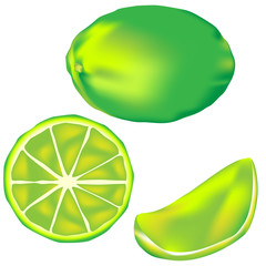 Whole lime, slice, and wedge - vector illustration