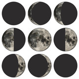 Phases of the moon scientific vector illustration poster