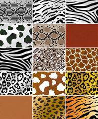Animal skins