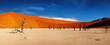Namib Desert, Sossusvlei, Namibia - 12976313