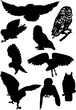 nine owl silhouettes