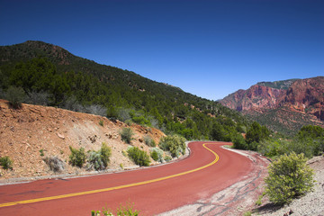 Red road upward