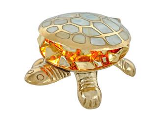 Fire turtle