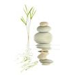 Zen Garden Tranquility - 13027303