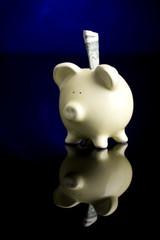 Piggy Bank 1031