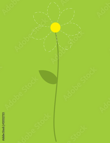 Dotted camomile flower