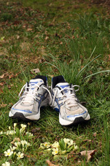 Two Running Shoes on Grass