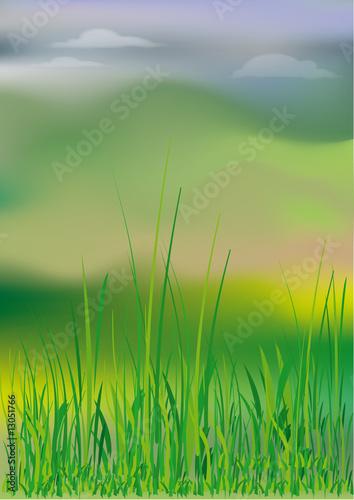 Fototapeta Landscape
